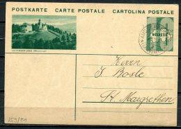 """Schweiz 1934 Bildpostkarte Mi.Nr.P 159/ Bild 21-10 Er,gruen""""Heerbrugg """"bef.""""Ausserferreger-St.Margrethen""""1 GS Used - Interi Postali"""