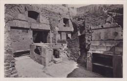 Italy Ostia Antica Enopolio Real Photo - Altre Città