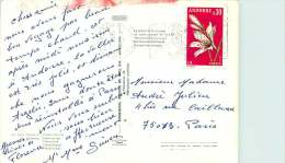 Carte Postale Pour La France Affranchie  0,30 Lys Yv 229 - Cartas