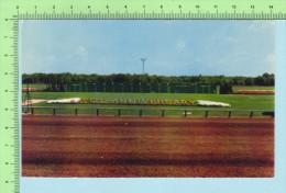 Salem N.H.  USA ( Rockingham Park Racing Track ) Post Card Carte Postale - Salem