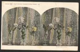 ROSEN UND LILIEN Stereophoto Lichtdruck Von Knackstedt & Näther Hamburg Ca. 1900 - Cartoline Stereoscopiche