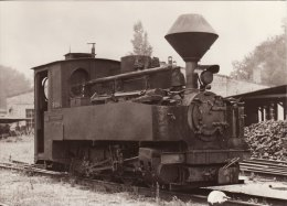 Railway Loco Data Card German NG DR Class 99 993313-6 600mm Brigadelok Germany - Sonstige
