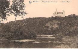 NA142- CIERGNON: Le Château Royal - Belgique