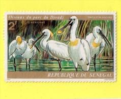 "SENEGAL  """"  2 F. """"  SPATULE BLANCHE ,, OISEAUX DU PARC DE DJOUDJ,,PA.,,NEUF SANS CHARNIERE - Senegal (1960-...)"