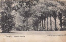 1905?, SINGAPUR - SINGAPORE - Botanical Gardens - Singapur