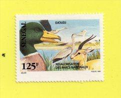 "SENEGAL  """" 125  F. """"  DJOUDJ,, 1992 ( ASLAM ) NEUF SANS CHARNIERE - Senegal (1960-...)"