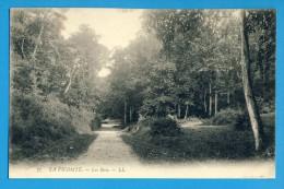 CP, 35, DINARD, LA VICOMTE - Les Bois, Vierge - Dinard