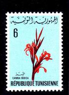 1969 - TUNESIEN -TUNISIE - TUNISIA - INDISCHES BLUMENROHR - FLOWER  **/MNH - Mi 716 - Tunisie (1956-...)