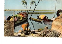 AFRIQUE EN COULEURS --la Vie Au Bord De La Rivière ---voir 2 Scans - Maroc