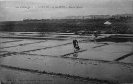 Saint Trojan Les Bains : Marais Salants - Ile D'Oléron