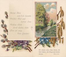 """LITHO Künstlerkarte, Birken Am Bach, Weidenkätzchen, Hasel, Vergißmeinnicht, """"Der Kindheit Traum Ist Heut Beendet..."""" - 1900-1949"""