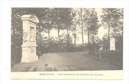 SCHERPENHEUVEL - MONTAIGU - Les Chapelles Du Chemin Du Rosaire (Y290) Hon - Scherpenheuvel-Zichem