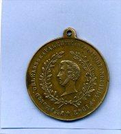 MEDAILLE DUC D ORLEANS PALERME 1810 NEUILLY 1842 DUC DE CHARTRES ENTERRE A DREUX STATUE 1845  AU CHATEAU D EU MAROCHETTI - Royal / Of Nobility