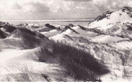 Cp , 62 , MERLIMONT-PLAGE , Les Dunes - France