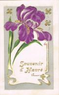 Souvenir D'Havré - Chimay