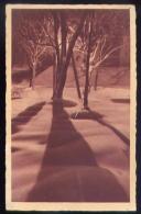 Il Tramonto - La Neve - Formato Piccolo Viaggiata - Cartoline
