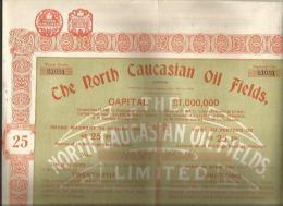 """Action Et Ses 14 Coupons De """" The North CAUCASIAN Oil FIELDS Limited""""  Pas Courant Voir Scanners - Actions & Titres"""