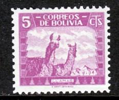 Bolivia 253   **     FAUNA  LLAMA - Bolivia