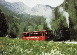 NG Mountain Railway Postcard Swiss Brienz Rothorn Bahn Switzerland Steam Cog 1 - Trains