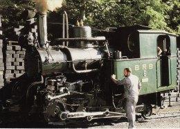 NG Mountain Railway Postcard Swiss Brienz Rothorn Bahn Switzerland Steam Cog 6 - Eisenbahnen