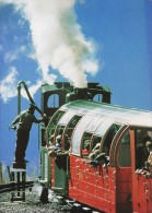 NG Mountain Railway Postcard Swiss Brienz Rothorn Bahn Switzerland Steam Cog - Trains