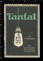 Old Original German Poster Stamp ( Cinderella, Reklamemarke ) TANTAL - Light Bulb Lamp Electricity Lighting Beleuchtung - Electricité
