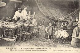 80 Le Crotoy. Mise En Sac Des Coques - Le Crotoy