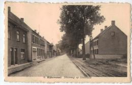8.Rijkevorsel -Steenweg Op Oostmalle - Rijkevorsel