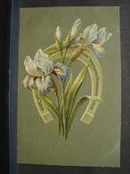 CP. 431. Fleurs Dans Un Fer à Cheval - Fleurs, Plantes & Arbres