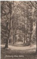 Sussex Postcard - Close Walks, Midhurst, Sussex   AA551 - England