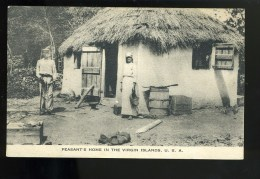 R BTPYS USA Peasant's Home In The Virgin Islands - Vierges (Iles), Amér.