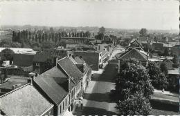 Overpelt : Panorama   ( Geschreven Met Zegel ) - Overpelt