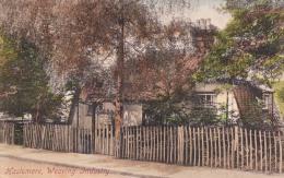 Haslemere Weaving Industry 1919 - Surrey
