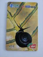China Prepaid Phonecard,snail,real Phonecard - Autres