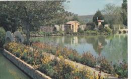 WEARE - AMBLESIDE WATER GARDENS - Angleterre