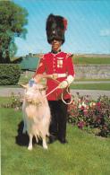 Corporal With Mascot Baptiste 22e Regiment La Citadelle Quebec Canada - Police - Gendarmerie