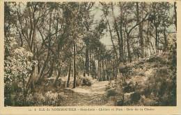 85 - Ile De NOIRMOUTIER - Sous-bois - Chênes Et Pins - Bois De La Chaize (LL. 8) - Noirmoutier