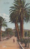 CPA Colorisée HYERES Avenue Godillot 1935 Animée Passant TRES BON ETAT  Non Circulée Vers 1935 - Hyeres