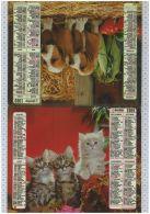 L'Almanach Des PTT De 1989, Vienne 86 - Calendars