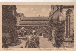 Hildesheim, Mariendom, Kreuzgang,  1000jährige Rose, Um 1915 - Kirchen U. Kathedralen