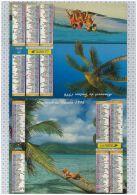 L'Almanach Des PTT De 1996, Morbihan 56 - Calendriers