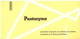 Buvard Pharmacie - PANTOZYME -  LABORATOIRE WANDER   - - Chemist's
