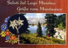 Lago Mussurina - Alberto Tre Cime - Formato Grande Non Viaggiata - Hotels & Restaurants