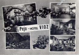 Pejo - Hote. Vioz - Trento - Formato Grande Viaggiata - Hotels & Restaurants