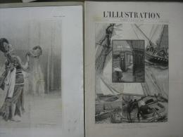 L'ILLUSTRATION  2419 LE HAVRE/ SAUTERELLES ALGERIE/ EXPOSITION   6 JUILLET 1889 - Journaux - Quotidiens