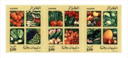 Algérie Algeria Vegetables Legumes Fruits Frutos Legumbres - Vegetables