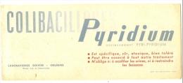 Buvard Médical COLIBACILLOSES Pyridium - Chemist's