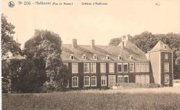 10- HALTINNES: Château - Belgique