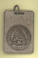 Medaglia Reggimentale ITALCON LIBANO 1° Missione FOLGORE - Italie