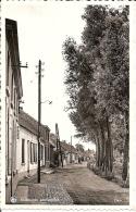 SINT AMANDS - Sint-Amands